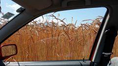 Ausblick aus meinem Auto