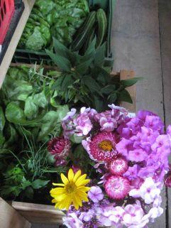 Erntekiste mit Kräuternu nd Blumen