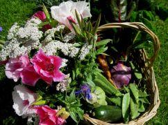 Erntekiste mit Blumen