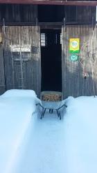 Füllen Erntekisten im Winter